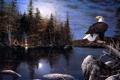 Картинка осень, ночь, река, орел, луна, лодка, костер