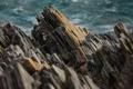 Картинка скальная порода, камень, вода, скала, океан