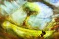 Картинка поле, трава, девушка, пейзаж, горы, дерево, сзади