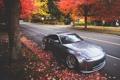 Картинка осень, nissan, 350z, ниссан