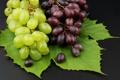Картинка фото, Лист, Фрукты, Виноград, Еда