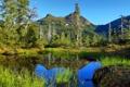 Картинка трава, вода, деревья, горы, природа, озеро, гладь