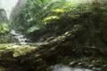 Картинка лес, рика, горы, дерево