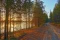Картинка дорога, лес, пейзаж, река