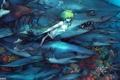 Картинка море, аниме, мужчина, акулы, подводный мир, поньо