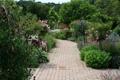 Картинка зелень, цветы, Англия, сад, дорожка, Devon, кусты