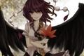 Картинка девушка, крылья, shameimaru aya, ikeda hazuki