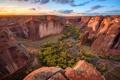 Картинка деревья, скалы, каньон, ущелье, США, вид сверху, Canyon de Chelly