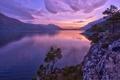 Картинка деревья, закат, горы, Норвегия, сосны, Norway, фьорд