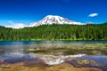 Картинка лес, природа, озеро, гора, Mount Rainier National Park