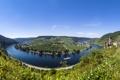Картинка природа, река, Германия, Germany, river Mosel