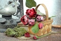 Картинка любовь, цветы, розы, лепестки