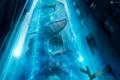 Картинка вода, рыбы, креатив, водолаз, эмблема, небоскрёбы, desktopography