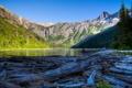 Картинка лес, небо, деревья, горы, озеро, сша, glacier national park