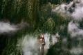 Картинка девушка, деревья, дым, Bella Kotak, Internal flight