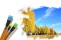 Картинка лес, небо, деревья, рисунок, кисти, золотая осень