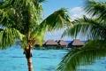 Картинка пальмы, океан, отель, French Polynesia, Moorea Island, Tropical Accommodations
