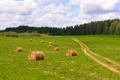 Картинка дорога, поле, лес, лето, небо, облака, роллы