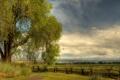 Картинка поле, небо, облака, природа, дом, дерево, забор