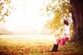 Картинка поле, осень, трава, природа, качели, дерево, листва