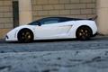 Картинка Lamborghini, wall, white, Gallardo, supercar, street, LP560-4