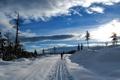 Картинка зима, дорога, небо, облака, снег, деревья, закат