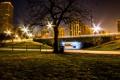 Картинка газон, дорожка, фонари, Lincoln Park, ночь, США, дерево