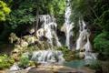 Картинка камни, тропики, джунгли, лес, зелень, скала, мох