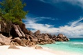 Картинка море, пейзаж, природа, тропики, камни, дерево