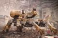 Картинка фантастика, мусор, робот, руины, трущобы