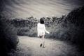 Картинка дорога, поле, трава, путь, одиночество, камни, настроение