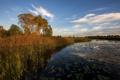 Картинка осень, пейзаж, озеро