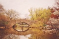 Картинка деревья, мост, озеро, отражение, Нью-Йорк, зеркало, вишни
