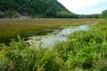 Картинка небо, трава, пейзаж, горы, река, болото, склон