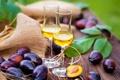 Картинка вино, бокалы, сливы, wine, plum