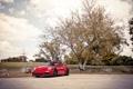 Картинка небо, облака, красный, дерево, 911, 997, Porsche