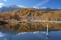 Картинка осень, деревья, горы, озеро, холмы, ствол