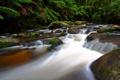 Картинка зелень, река, камни, водопад, растения, Австралия, пороги