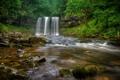 Картинка лес, река, Англия, водопад, England, Уэльс, Wales