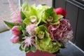 Картинка букет, Тюльпаны, Орхидеи, Гортензия, Морозник