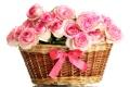Картинка цветы, розы, розовые