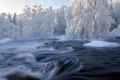 Картинка снег, природа, река, поток, зима.деревья