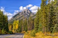 Картинка лес, горы, осень, небо, дорога