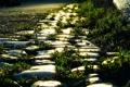 Картинка дорога, трава, свет, камни, обочина