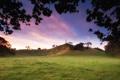 Картинка небо, трава, листья, облака, деревья, пейзаж, природа