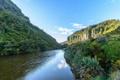 Картинка река, скалы, растительность, Пунакаики, Punakaiki, Новая Зеландия