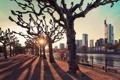 Картинка город, река, деревья