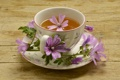Картинка чашка, чай, цветы