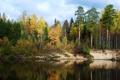 Картинка осень, вода, деревья