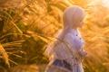 Картинка трава, игрушка, кукла, блондинка